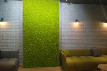 Стены из стабилизированного мха